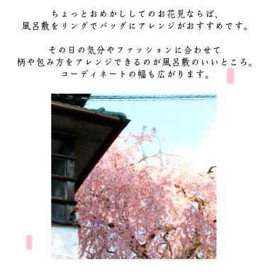 京都の春を楽しむ